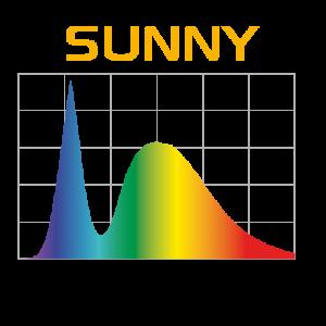 wykres-sunny_808-300x300
