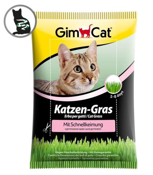 Gimcat Katzengras 100g Schnellkeim